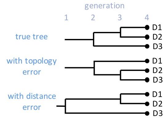 D3 Topology